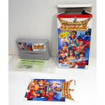 Hiryu no Ken S: Golden Fighter (boxat), SFC