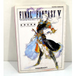 Final Fantasy V - Basic Knowledge